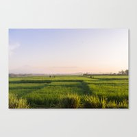 bali Canvas Prints featuring Bali by Mark Chou Photography