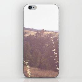 California  iPhone Skin