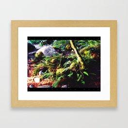 Fern & Rocks Framed Art Print