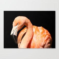 Flamingo II Canvas Print