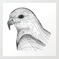falcon Art Prints featuring Falcon by OLIVIA WILLIS