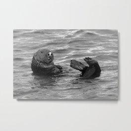 otter feet Metal Print