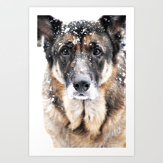 GERMAN SHEPHERD IN THE SNOW Art Print