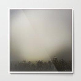 Morning Mist 2 Metal Print