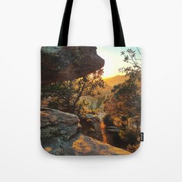 Tucson's Golden Hour Tote Bag