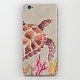 Tan Sea Turtle iPhone Skin