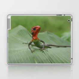 Gecko iguana Red Head Laptop & iPad Skin