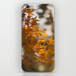 Autumnlights - Gold marple leaves at sparkling backlight iPhone Skin