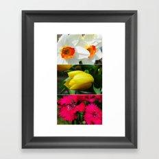 Flower Triptych Framed Art Print