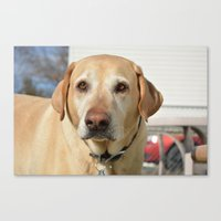 patrick Canvas Prints featuring Patrick by Dottie