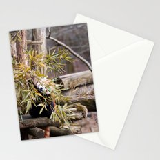 Ailurus Fulgens II Stationery Cards