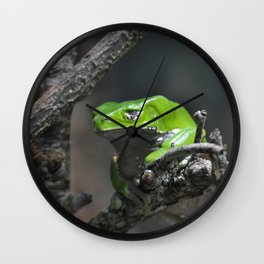 Monkey Frog Wall Clock
