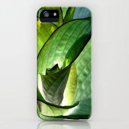 Hosta - Inverted Art iPhone Case