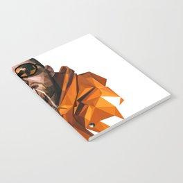 Mac Miller Notebook