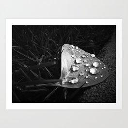 Tiny Jewels Art Print