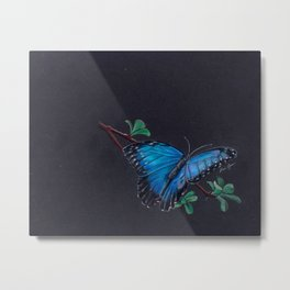 Blue morpho colored pencil Metal Print