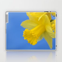 Narcissus close-up Laptop & iPad Skin