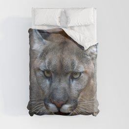 Mountain Lion Comforters