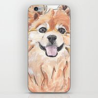 pomeranian iPhone & iPod Skins featuring EVE / Pomeranian.  by ali_grace_gal