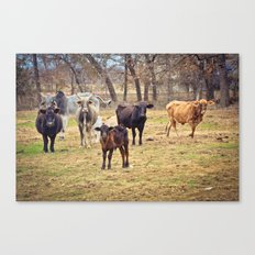 Texas. Canvas Print
