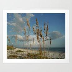 Sea Oats Seascape Art Print