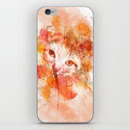 Arthur the cat iPhone Skin