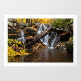 Autumn in the Missouri Ozarks Art Print