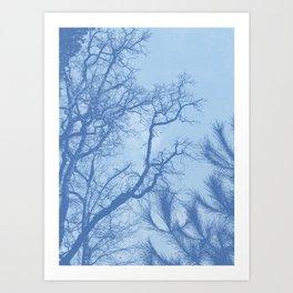 Winter in Opatija #1 Art Print