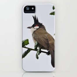 Red-Whiskered Bulbul iPhone Case