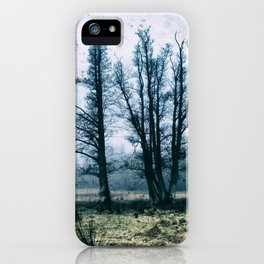 Bare Winter Trees iPhone Case