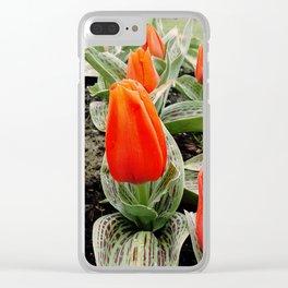 Fern + Crimson Clear iPhone Case
