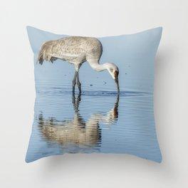 Sandhill Crane and Reflection Throw Pillow