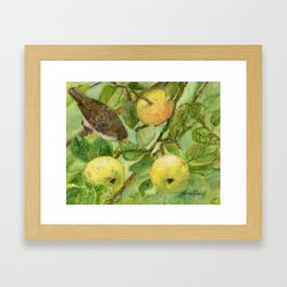 Bird in Apple Tree with Apples - Watercolor on Panel - Laurie Rohner Framed Art Print
