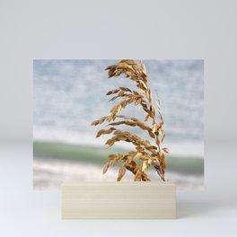 Sea Oats in the breeze Mini Art Print