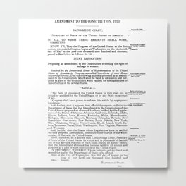 19th Amendment - Women's Right to Vote Metal Print