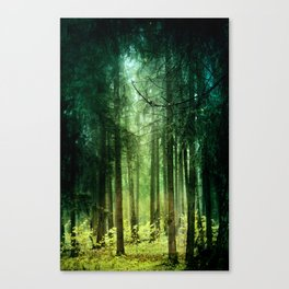 Enchanted light Canvas Print