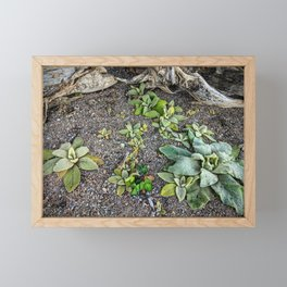 Frozen Ground Framed Mini Art Print