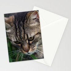 Outgoing cat 085 Stationery Cards