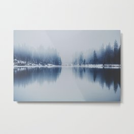 Foggy Winter Metal Print