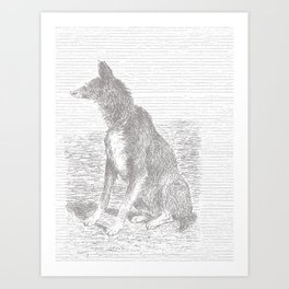 Sitting dog Art Print