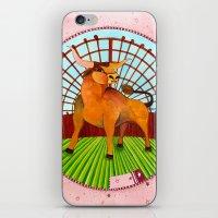 taurus iPhone & iPod Skins featuring Taurus by Sandra Nascimento
