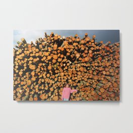 cut forest Metal Print