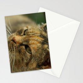 Kitty3 Stationery Cards