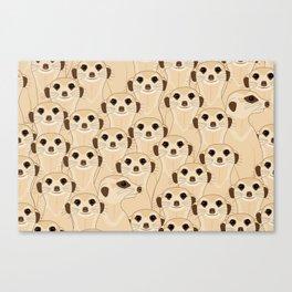 Meerkats - Suricata Canvas Print