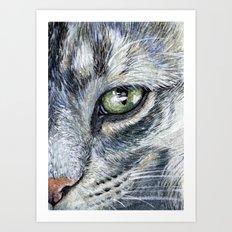 Cat portrait 261 Art Print