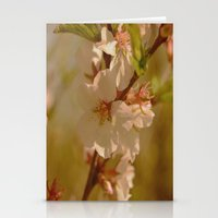 cherry blossoms Stationery Cards featuring Cherry Blossoms by Dorothy Pinder