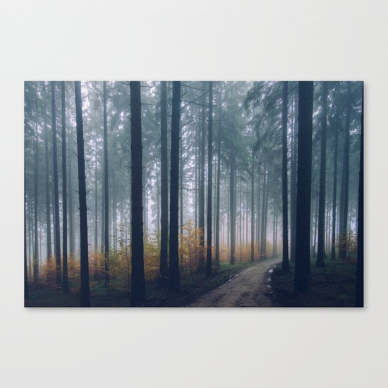 Into the woods #fog Canvas Print