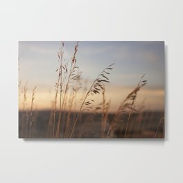 Wheat Field Sunset Photography Print Metal Print