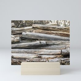 Hand Cut Lumber From Dismantled Log Barn 2 Mini Art Print