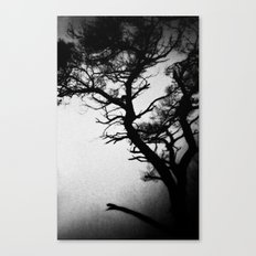 Tree in the fog Canvas Print